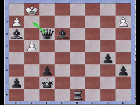 Bastiaan versus Alesh, game 2: Scandinavian handicap match (2/2)