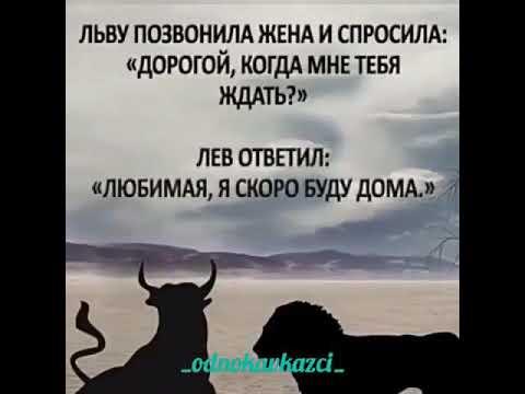 Мудрые слова 👍