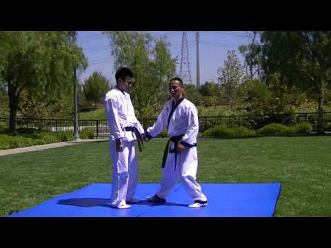 Hapkido Sun Soo Attack Techniques Joint Locks 합기도 선수 꺽기 1-5 Image 1