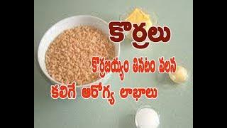 Korra Rice Health Benefits In Telugu.