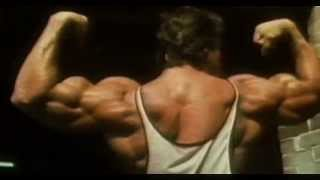 Arnold Schwarzenegger Bodybuilding Motivation 2013 [HD]