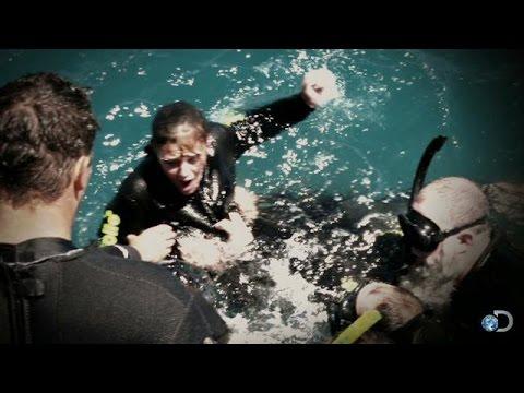 Hero Saves Woman During Snorkeling Shark Attack