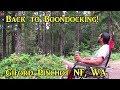 Back to Boondocking! Gifford Pinchot NF, WA VanLife On the Road mp3 indir