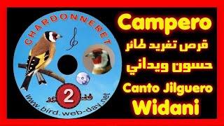chant de chardonneret (widani) 1 (CD)موقنين