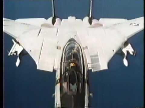 F 14 (戦闘機)の画像 p1_3