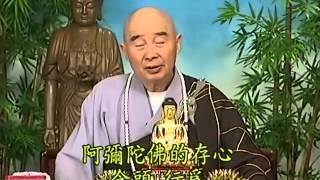 Tập 187 - (HQ) Kinh Đại Thừa Vô Lượng Thọ - Pháp sư Tịnh Không chủ giảng - cẩn dịch cư sĩ Vọng Tây