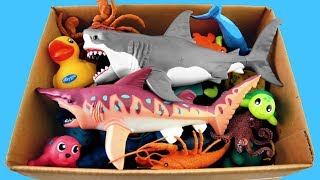 Lots of Zoo Wild Animals/Safari Videos And Schleich Toys/Learn Colors For Children
