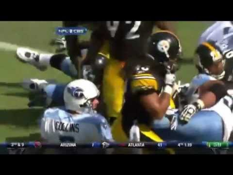 Troy Polamalu Tribute/Highlights