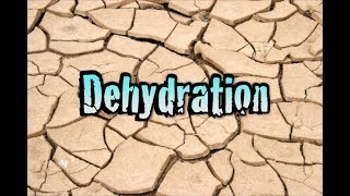 Dehydration: Finding Water in the Wilderness