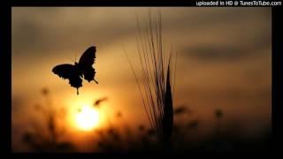 Watch Lenny Kravitz Butterfly video