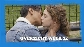 Overzicht week 12 | #Forever