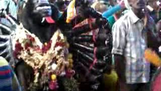 kulasai dasara 2012 sivenkudiyeatru 10th day kali aatam in kulasakarapatinam BY S VELKUMARAN