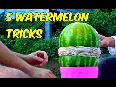 5 Watermelon Tricks