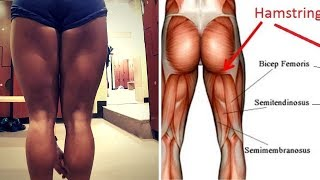 How to develop your Hamstrings - My 5 Best Hamstring Exercises