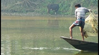 Net Fishing | Catching Fish With Cast Net | Net Fishing in the village (Part-154)