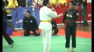 The thao - Chay tron, nup, can van vo dich - Pencak Silat SEA games 2011