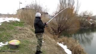 Рыбалка 2017 зимой на Сазана  | Незамерзающее озеро| VLOG