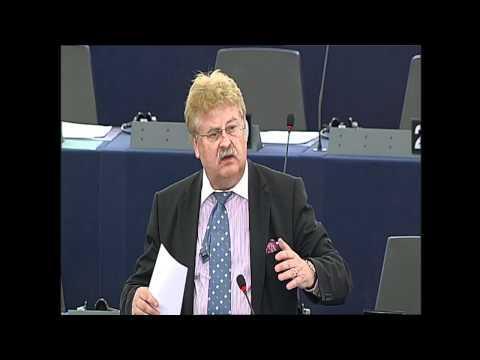 Fiica Iuliei Timoşenko la Parlamentul European
