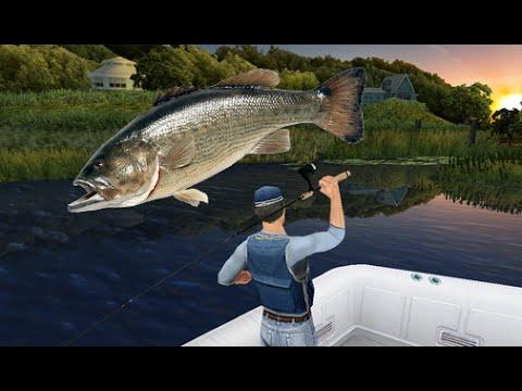 Fishing king login