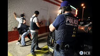 Immigration raids to target suspected gang members