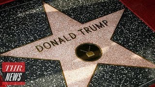 Donald Trump's Hollywood Star Vandalized Again, LAPD Investigate | THR News