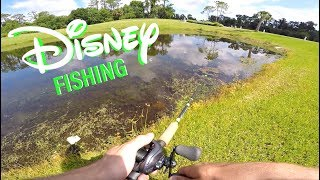 Can You Fish In Disney World??