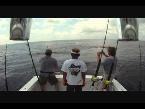 Sport Fishing in Costa Rica - Feb 5   Robert Higgins
