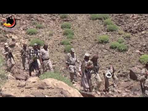فيديو: تقدم قوات الجيش والمقاومة في جبهة نهم شرق صنعاء وحدة المعارك المشتعلة