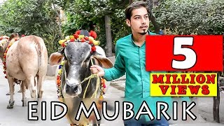 Bakra Eid Mubarik ( cow Qurbani ) By Peshori Vines Official