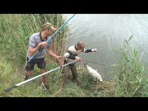 Ловля толстолобика на пружину. О рыбалке всерьез. Выпуск 316 HD