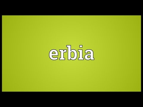 Header of erbia