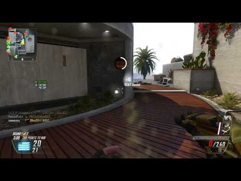 BO2 Hacks?! :: Invisibility, Unlimited Ammo & Flying?