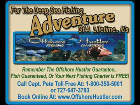 www.FYI-Fla.com & Offshore Hustler... Fish Guaranteed! Or The Next Trip Is FREE!