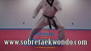 Taekwondo strength and agility drills with ladders