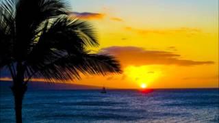 Watch Jimmy Buffett Lone Palm video