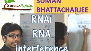 RNAi mechanism | RNA interference pathway using siRNA and shRNA