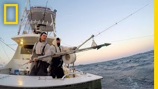 Welcome Aboard, Bluefin | Wicked Tuna: Outer Banks