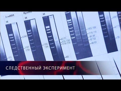 Дело о ДНК. Следственный эксперимент