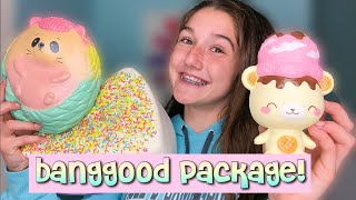 YUMMIIBEAR SQUISHY FROM BANGGOOD!? Squishy Review Package