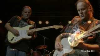 Walter Trout Going Down 2012