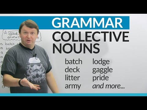 Collective Nouns in English: How to talk about groups of people and things