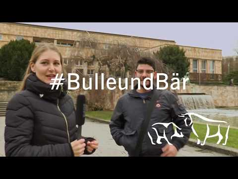 """#BulleundBär: """"Was ist eine Börse?"""""""
