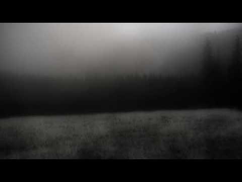 Daylight Dies - Solitary Refinement