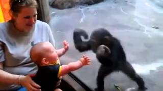 Baby play with monky funny dance and acting of ape
