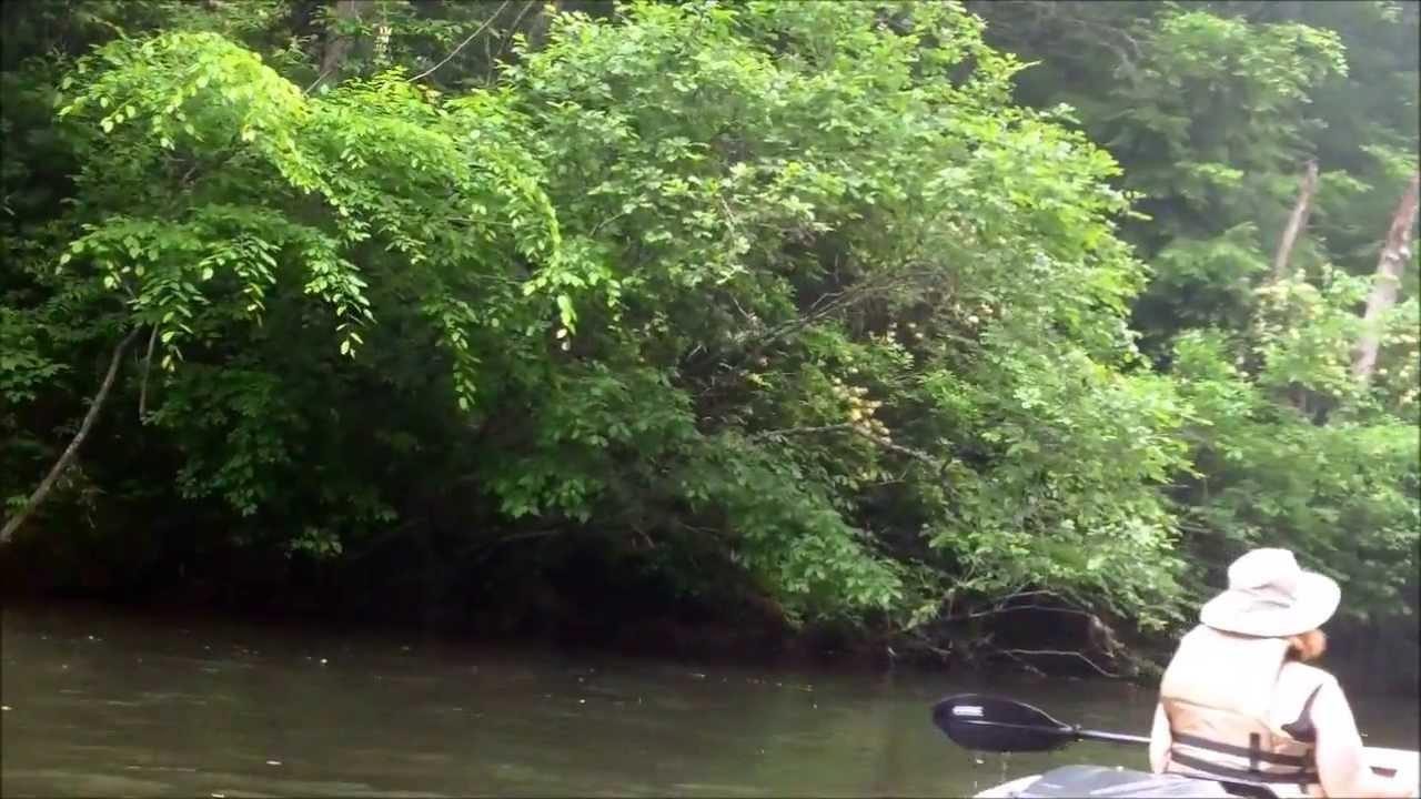 Antietam Creek Canoe Bear Creek Canoe Run 6 15 2013