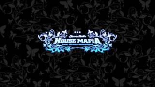 Watch Swedish House Mafia Knas video