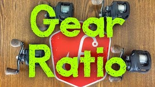 What Gear Ratio is the Best for Bass Fishing