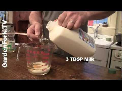 5 minute chocolate cake recipe : GardenFork.TV
