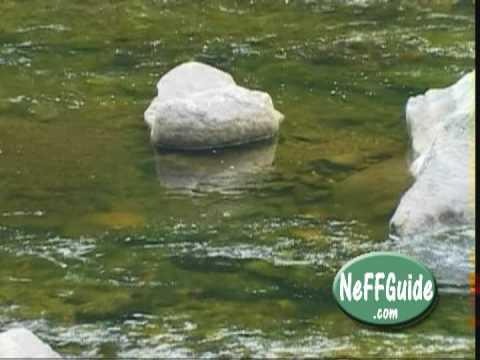 Fly fishing deerfield river summer wade trip part 2 of 2 for Deerfield river fly fishing