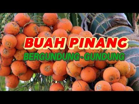 MASRI - ORKES MANDILING RAYUAN SUKMA DAUN( Live Bengko Sobung Sangkapura)